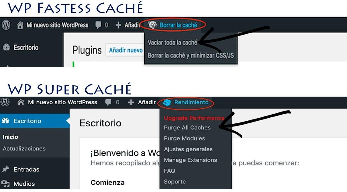 Pulgar cache wordpress
